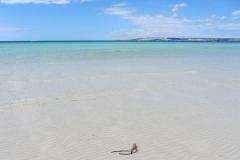 beach-accommodation-ki-kangaroo-island-star-beachfront-group-holiday-house_gallery8